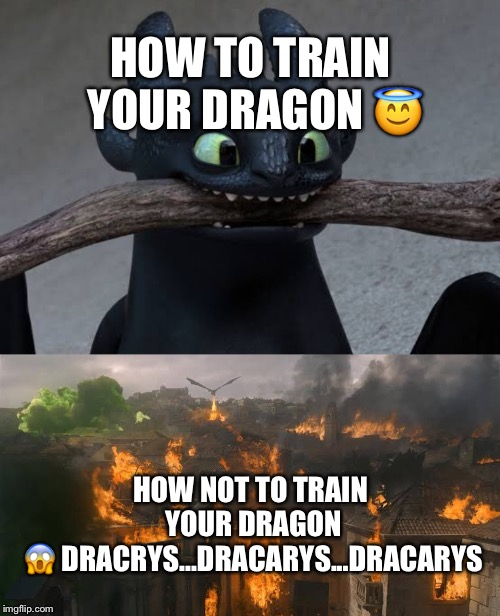 HOW TO TRAIN YOUR DRAGON ? HOW NOT TO TRAIN YOUR DRAGON ? DRACRYS...DRACARYS...DRACARYS | image tagged in game of thrones,daenerys,dragons,funny memes | made w/ Imgflip meme maker