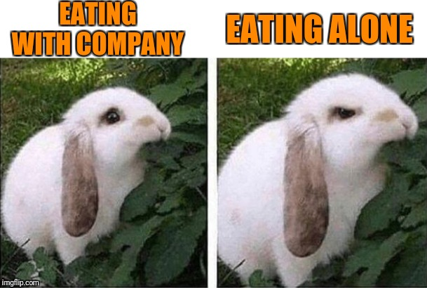 EATING WITH COMPANY EATING ALONE | image tagged in table manner,social etiquette | made w/ Imgflip meme maker