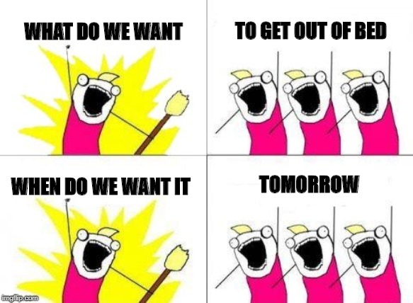 What Do We Want Meme | WHAT DO WE WANT TO GET OUT OF BED WHEN DO WE WANT IT TOMORROW | image tagged in memes,what do we want | made w/ Imgflip meme maker