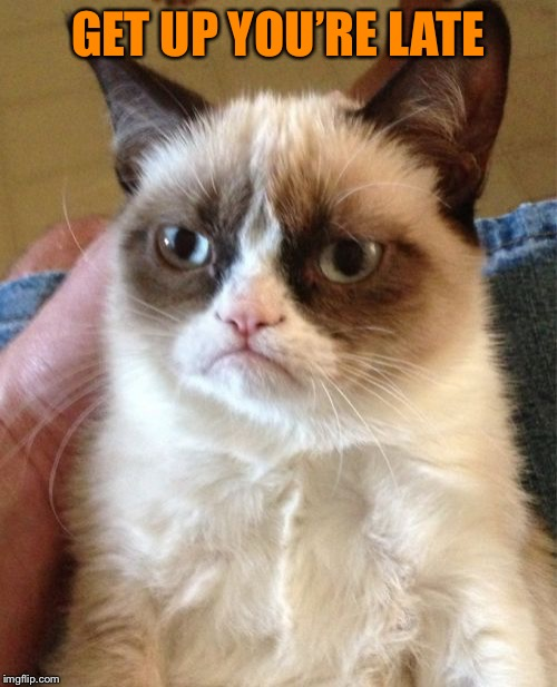 Grumpy Cat Meme | GET UP YOU'RE LATE | image tagged in memes,grumpy cat | made w/ Imgflip meme maker