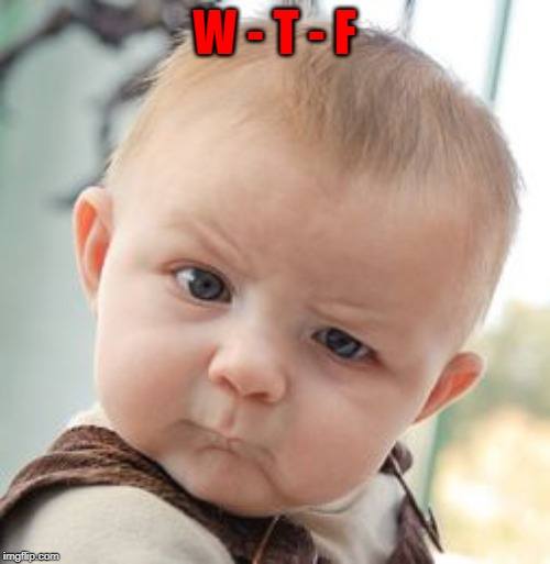 Skeptical Baby Meme | W - T - F | image tagged in memes,skeptical baby | made w/ Imgflip meme maker