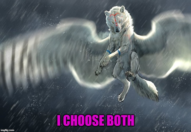 I CHOOSE BOTH | made w/ Imgflip meme maker