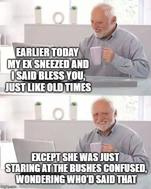 I hope Harold doesn't beat around the bush | EARLIER TODAY MY EX SNEEZED AND I SAID BLESS YOU, JUST LIKE OLD TIMES EXCEPT SHE WAS JUST STARING AT THE BUSHES CONFUSED, WONDERING WHO'D SA | image tagged in memes,hide the pain harold,bush,hiding,sneezing,ex girlfriend | made w/ Imgflip meme maker