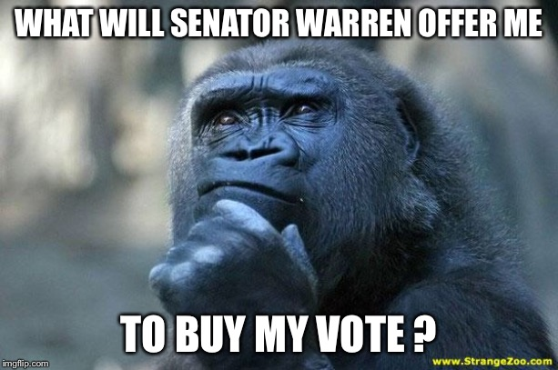 Deep Thoughts |  WHAT WILL SENATOR WARREN OFFER ME; TO BUY MY VOTE ? | image tagged in deep thoughts | made w/ Imgflip meme maker