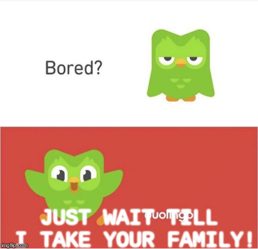DUOLINGO BORED | JUST WAIT TILL I TAKE YOUR FAMILY! | image tagged in duolingo bored | made w/ Imgflip meme maker