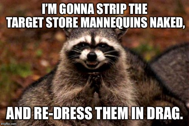 Target is undergoing another remodel | I'M GONNA STRIP THE TARGET STORE MANNEQUINS NAKED, AND RE-DRESS THEM IN DRAG. | image tagged in memes,evil plotting raccoon,target,mannequin,drag,dress | made w/ Imgflip meme maker