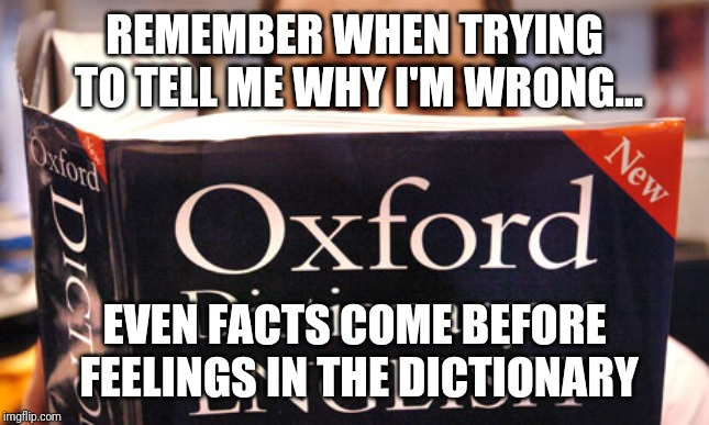 dictionary | REMEMBER WHEN TRYING TO TELL ME WHY I'M WRONG... EVEN FACTS COME BEFORE FEELINGS IN THE DICTIONARY | image tagged in dictionary | made w/ Imgflip meme maker