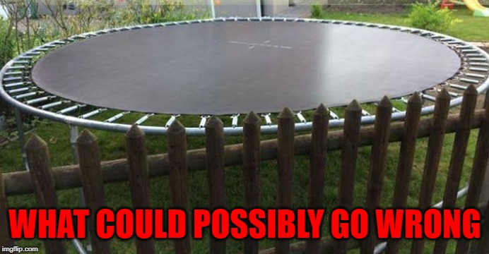 Somebody's gonna learn the hard way! | WHAT COULD POSSIBLY GO WRONG | image tagged in tramp the impaler,memes,trampolines,funny,bad choices,deathwish | made w/ Imgflip meme maker