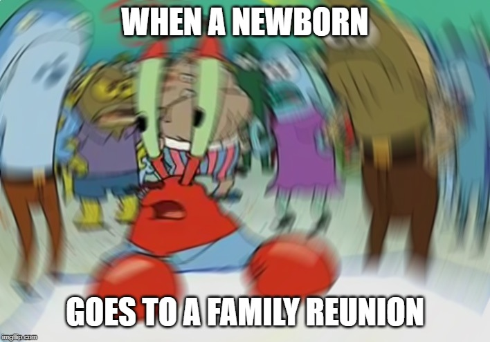 Mr Krabs Blur Meme | WHEN A NEWBORN GOES TO A FAMILY REUNION | image tagged in memes,mr krabs blur meme | made w/ Imgflip meme maker