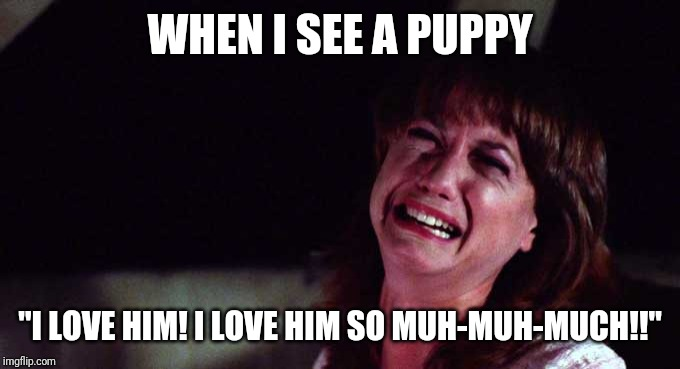 "Every puppy is my favorite puppy | WHEN I SEE A PUPPY ""I LOVE HIM! I LOVE HIM SO MUH-MUH-MUCH!!"" 
