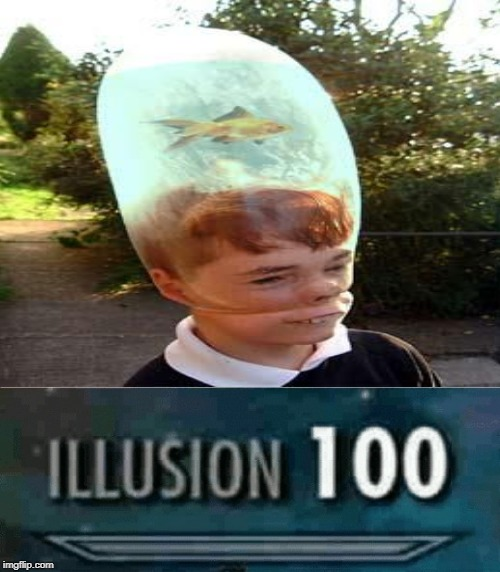 Illusion 100 | image tagged in illusion 100 | made w/ Imgflip meme maker