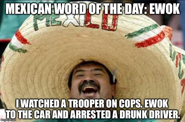 Star Wars - Rise Of The Drunk Driver | MEXICAN WORD OF THE DAY: EWOK I WATCHED A TROOPER ON COPS. EWOK TO THE CAR AND ARRESTED A DRUNK DRIVER. | image tagged in mexican word of the day,memes,star wars,ewok,drunk driving,stormtrooper | made w/ Imgflip meme maker