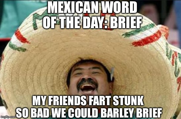 mexican word of the day | MEXICAN WORD OF THE DAY: BRIEF MY FRIENDS FART STUNK SO BAD WE COULD BARLEY BRIEF | image tagged in mexican word of the day | made w/ Imgflip meme maker