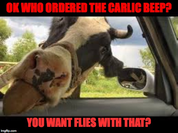 OK WHO ORDERED THE CARLIC BEEP? YOU WANT FLIES WITH THAT? | made w/ Imgflip meme maker