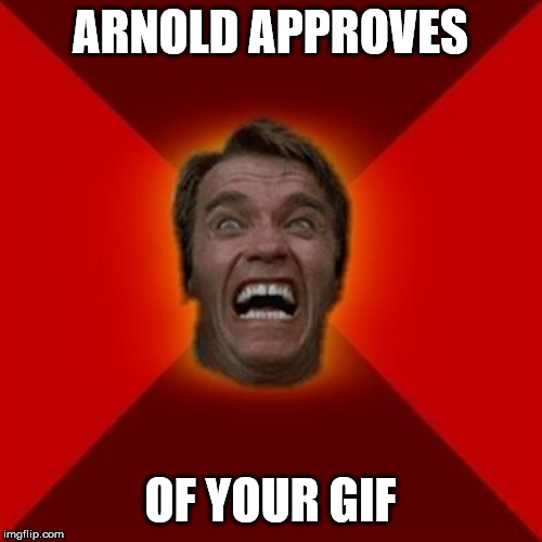 ARNOLD APPROVES OF YOUR GIF | image tagged in arnold meme | made w/ Imgflip meme maker
