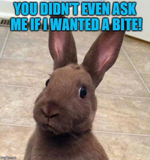 Really? Rabbit | YOU DIDN'T EVEN ASK ME IF I WANTED A BITE! | image tagged in really rabbit | made w/ Imgflip meme maker