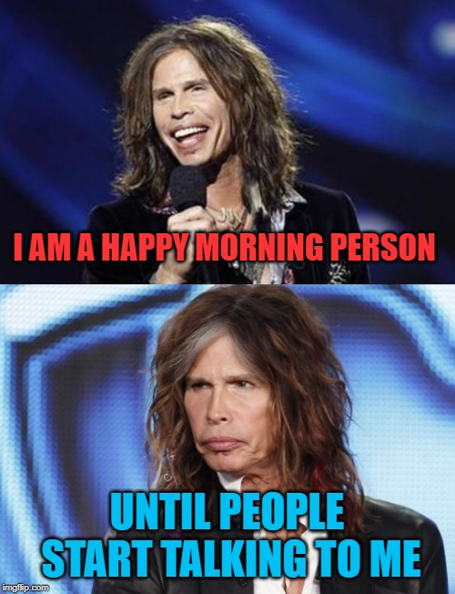 Happy Sad Steven Tyler | I AM A HAPPY MORNING PERSON UNTIL PEOPLE START TALKING TO ME | image tagged in happy sad steven tyler | made w/ Imgflip meme maker