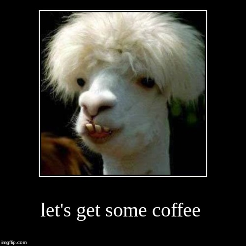 let's get some coffee | | image tagged in funny,demotivationals,dating,coffee,smile,so i guess you can say things are getting pretty serious | made w/ Imgflip demotivational maker