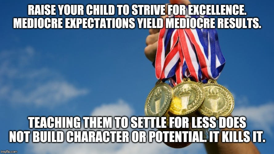 RAISE YOUR CHILD TO STRIVE FOR EXCELLENCE. MEDIOCRE EXPECTATIONS YIELD MEDIOCRE RESULTS. TEACHING THEM TO SETTLE FOR LESS DOES NOT BUILD CHA | image tagged in gold medals | made w/ Imgflip meme maker