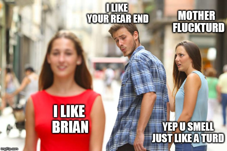 Distracted Boyfriend Meme | I LIKE BRIAN I LIKE YOUR REAR END MOTHER  FLUCKTURD YEP U SMELL JUST LIKE A TURD | image tagged in memes,distracted boyfriend | made w/ Imgflip meme maker