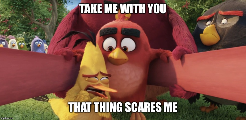 ANGRY BIRDS | TAKE ME WITH YOU THAT THING SCARES ME | image tagged in angry birds | made w/ Imgflip meme maker