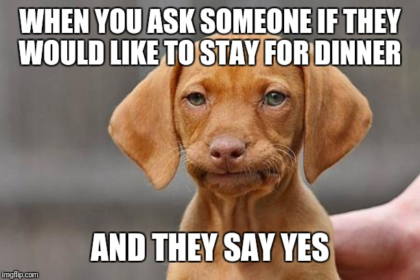 Dissapointed puppy | WHEN YOU ASK SOMEONE IF THEY WOULD LIKE TO STAY FOR DINNER AND THEY SAY YES | image tagged in dissapointed puppy | made w/ Imgflip meme maker
