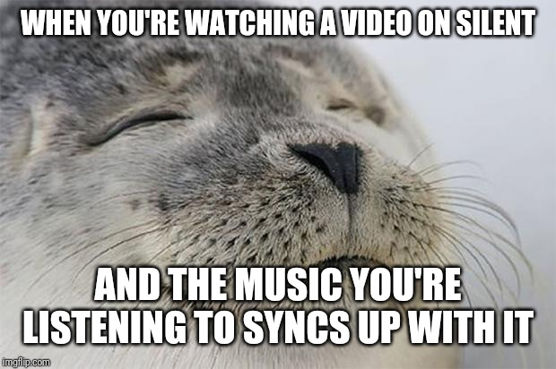 Satisfied Seal | WHEN YOU'RE WATCHING A VIDEO ON SILENT AND THE MUSIC YOU'RE LISTENING TO SYNCS UP WITH IT | image tagged in memes,satisfied seal,AdviceAnimals | made w/ Imgflip meme maker