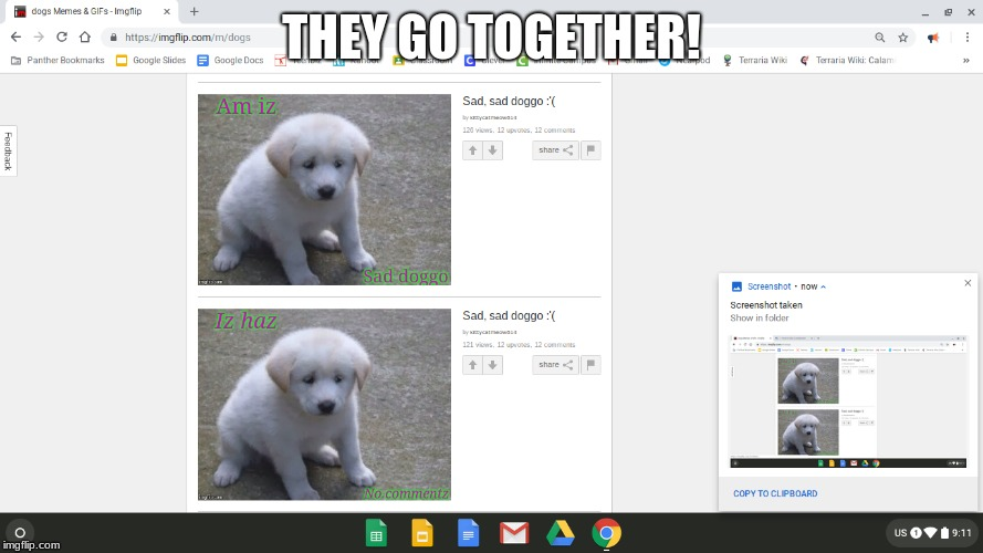 Luck | THEY GO TOGETHER! | image tagged in sad dog | made w/ Imgflip meme maker