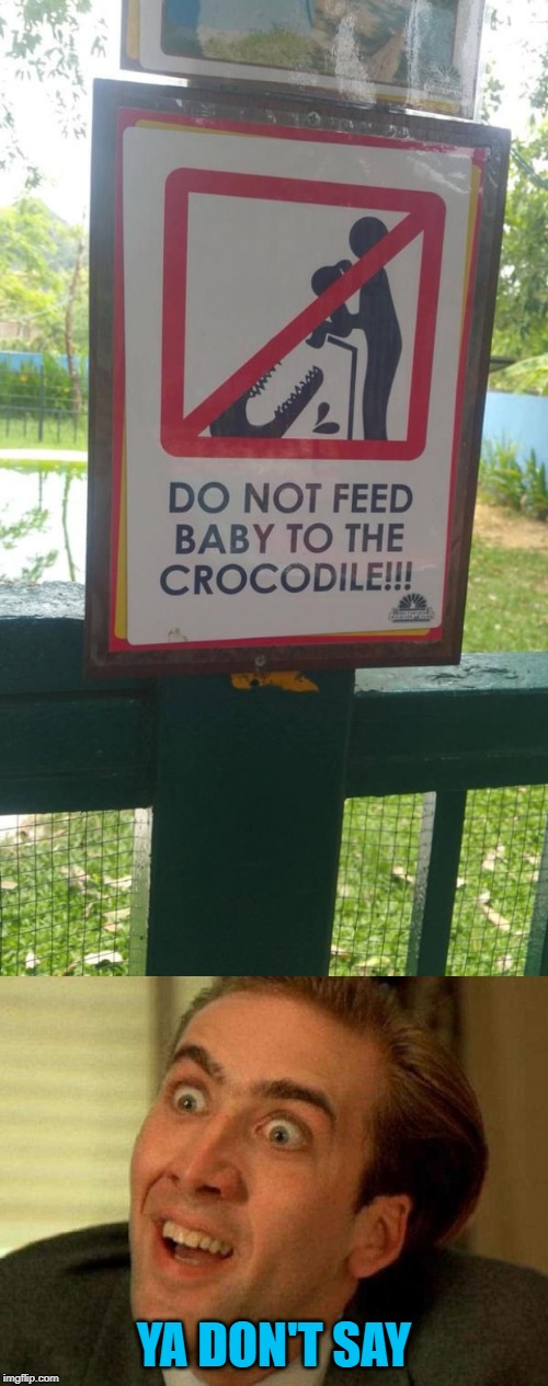 Why do they even need this sign?!? Zoo Week May 12-18 a Dankmaster546 and 1forpeace Event | YA DON'T SAY | image tagged in crazy signs,memes,you don't say,funny,zoo week,why | made w/ Imgflip meme maker