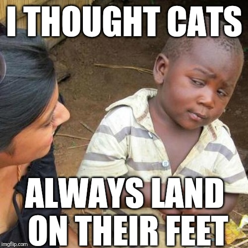 Third World Skeptical Kid Meme | I THOUGHT CATS ALWAYS LAND ON THEIR FEET | image tagged in memes,third world skeptical kid | made w/ Imgflip meme maker