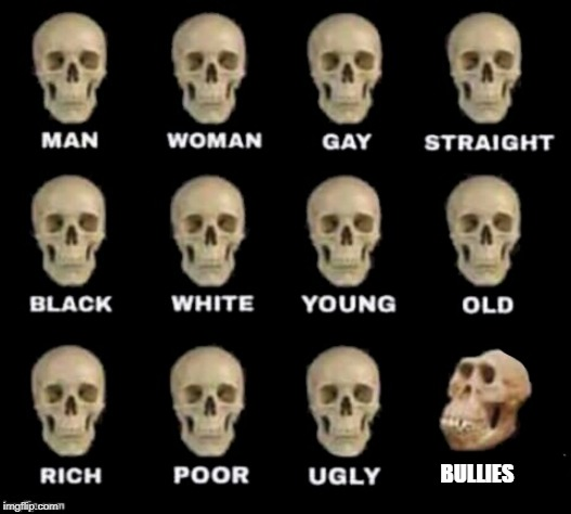 idiot skull | BULLIES | image tagged in idiot skull | made w/ Imgflip meme maker