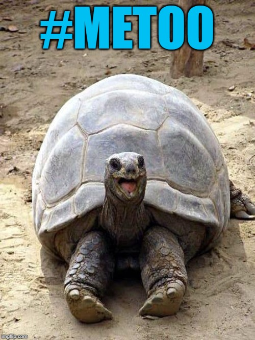 Smiling happy excited tortoise | #METOO | image tagged in smiling happy excited tortoise | made w/ Imgflip meme maker