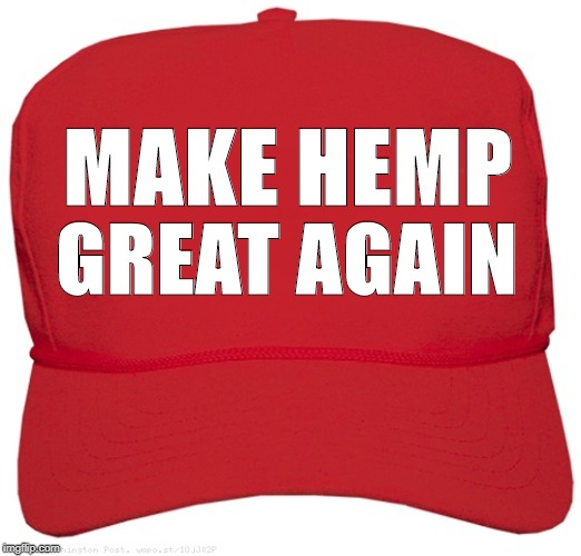 blank red MAGA hat | MAKE HEMP GREAT AGAIN | image tagged in blank red maga hat | made w/ Imgflip meme maker