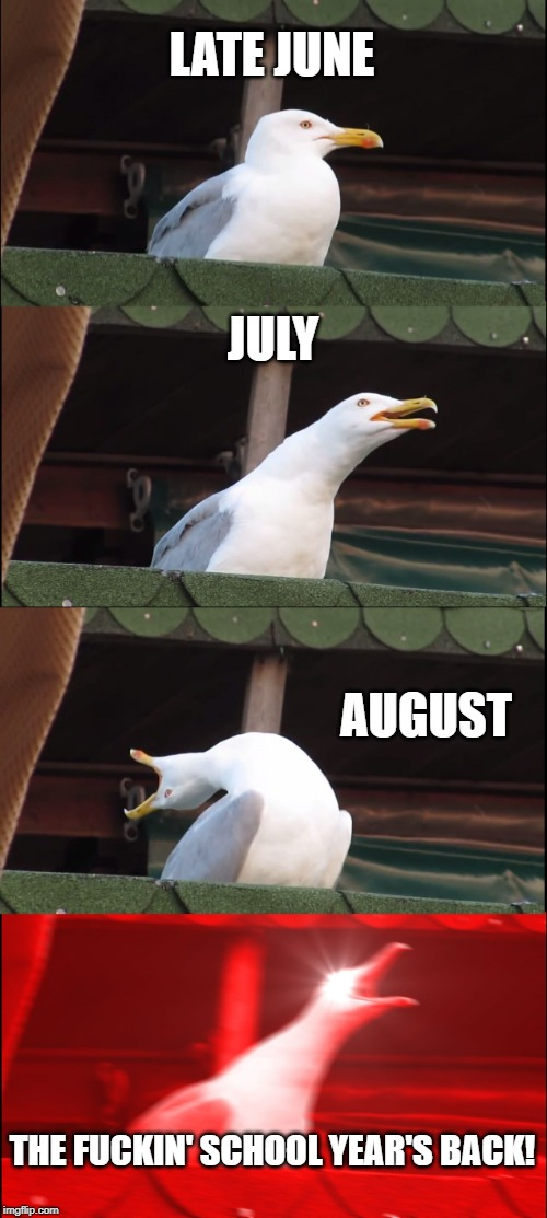 Inhaling Seagull Meme | LATE JUNE JULY AUGUST THE F**KIN' SCHOOL YEAR'S BACK! | image tagged in memes,inhaling seagull | made w/ Imgflip meme maker