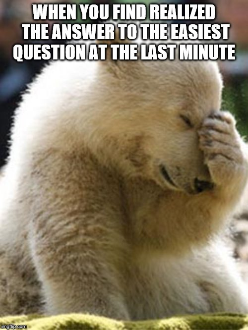 Facepalm Bear |  WHEN YOU FIND REALIZED THE ANSWER TO THE EASIEST QUESTION AT THE LAST MINUTE | image tagged in memes,facepalm bear | made w/ Imgflip meme maker