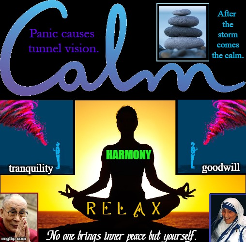 My Mantra is Om... Om Sweet Om | After the storm comes the calm. Panic causes tunnel vision. No one brings inner peace but yourself. R E L A X tranquility goodwill HARMONY | image tagged in vince vance,mother teresa,mahatma gandi,inner peace,keep calm,tranquility | made w/ Imgflip meme maker