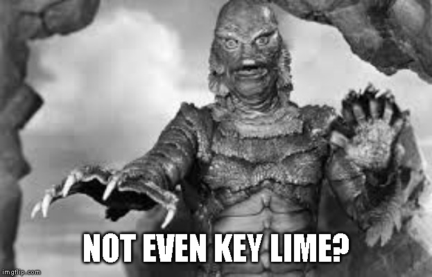 NOT EVEN KEY LIME? | made w/ Imgflip meme maker
