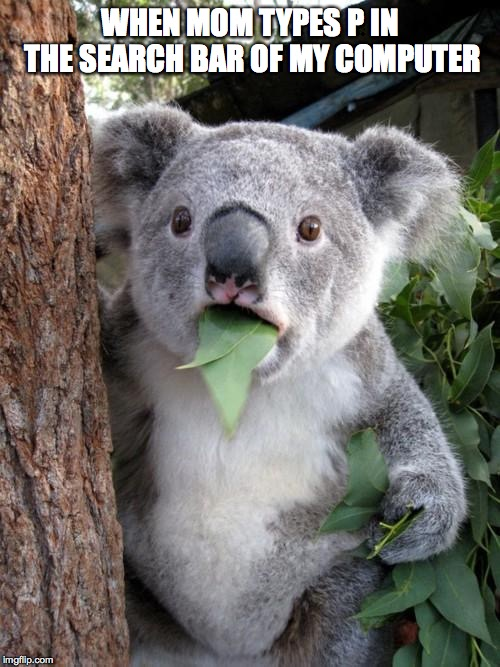 Surprised Koala |  WHEN MOM TYPES P IN THE SEARCH BAR OF MY COMPUTER | image tagged in memes,surprised koala | made w/ Imgflip meme maker