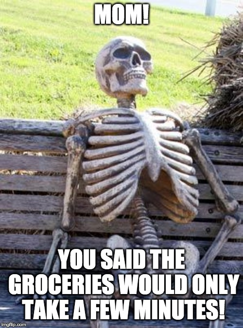 Waiting Skeleton | MOM! YOU SAID THE GROCERIES WOULD ONLY TAKE A FEW MINUTES! | image tagged in memes,waiting skeleton | made w/ Imgflip meme maker