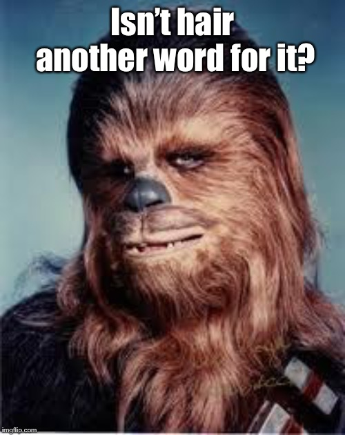 chewbacca | Isn't hair another word for it? | image tagged in chewbacca | made w/ Imgflip meme maker