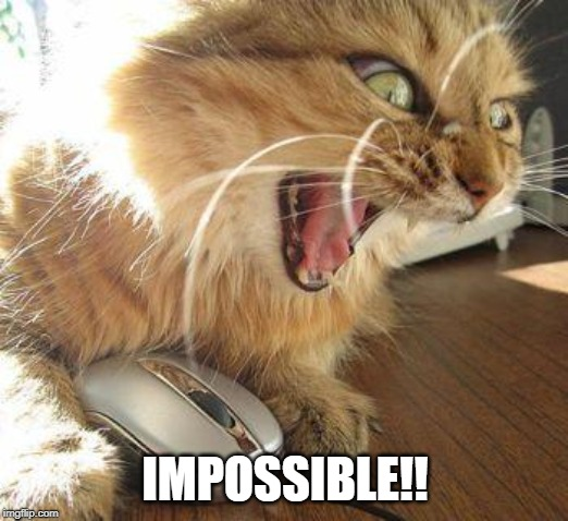 angry cat | IMPOSSIBLE!! | image tagged in angry cat | made w/ Imgflip meme maker