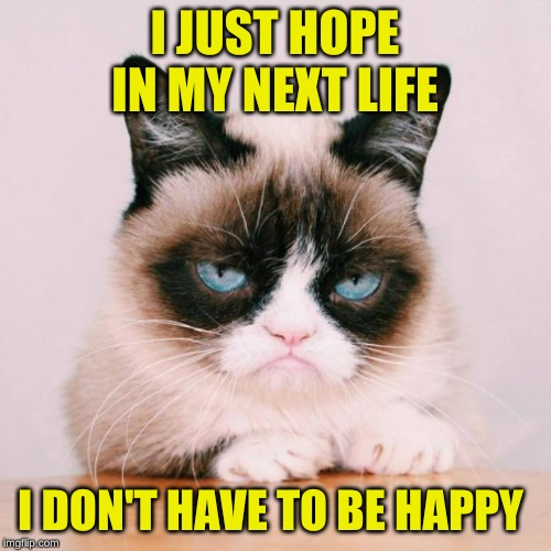grumpy cat again | I JUST HOPE IN MY NEXT LIFE I DON'T HAVE TO BE HAPPY | image tagged in grumpy cat again | made w/ Imgflip meme maker