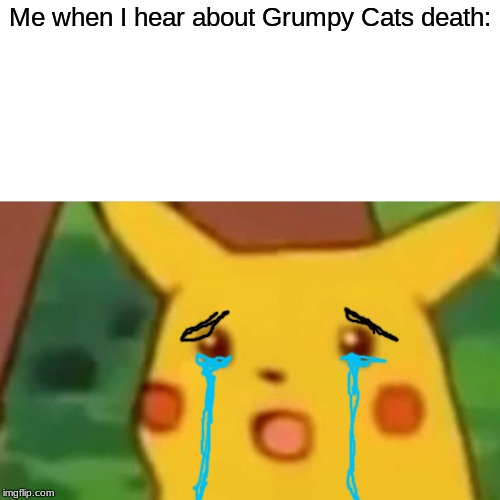Surprised Pikachu Meme | Me when I hear about Grumpy Cats death: | image tagged in memes,surprised pikachu | made w/ Imgflip meme maker