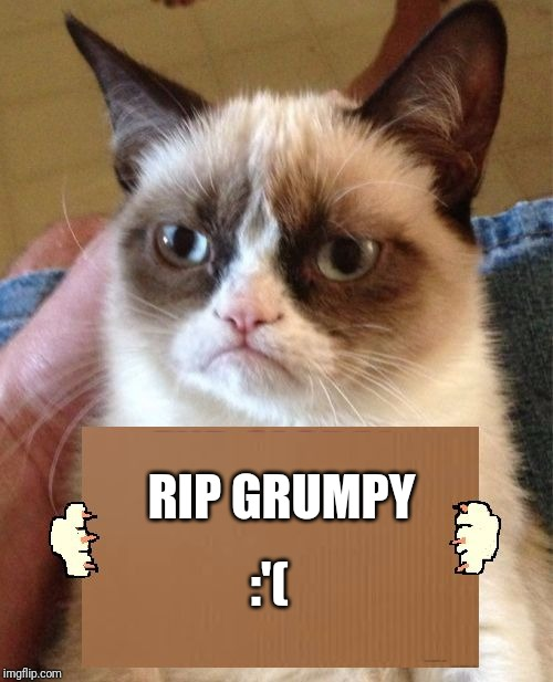She will forever be remembered | :'( RIP GRUMPY | image tagged in grumpy cat cardboard sign,sad,why god why,rip | made w/ Imgflip meme maker