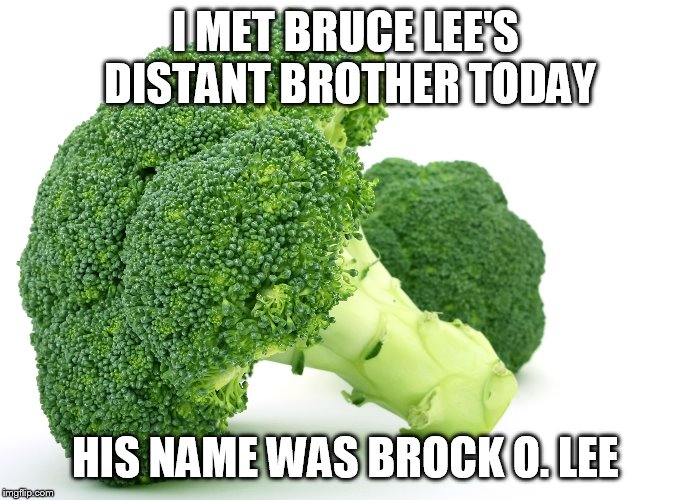 Broccoli | I MET BRUCE LEE'S DISTANT BROTHER TODAY HIS NAME WAS BROCK O. LEE | image tagged in broccoli | made w/ Imgflip meme maker