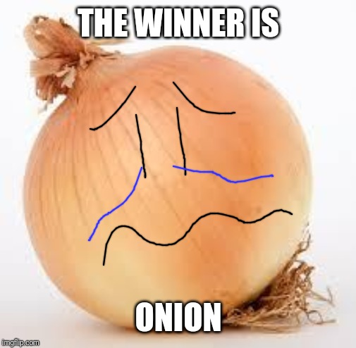 Onion | THE WINNER IS ONION | image tagged in onion | made w/ Imgflip meme maker