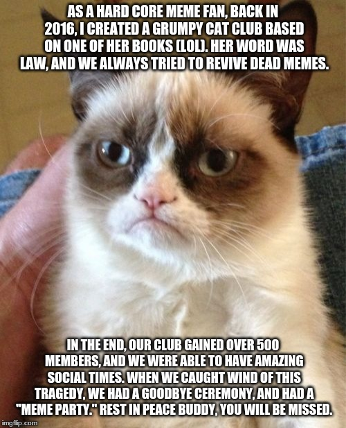 Grumpy Cat | AS A HARD CORE MEME FAN, BACK IN 2016, I CREATED A GRUMPY CAT CLUB BASED ON ONE OF HER BOOKS (LOL). HER WORD WAS LAW, AND WE ALWAYS TRIED TO | image tagged in memes,grumpy cat | made w/ Imgflip meme maker