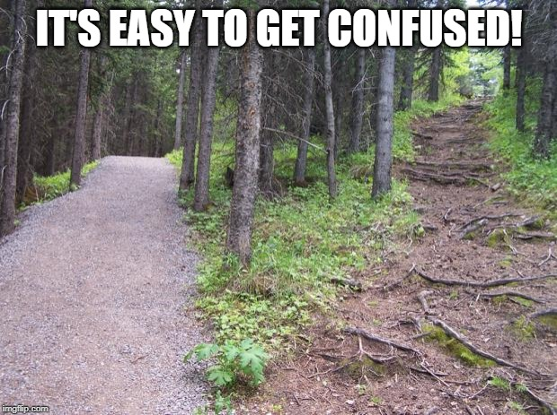 Path split in forest | IT'S EASY TO GET CONFUSED! | image tagged in path split in forest | made w/ Imgflip meme maker