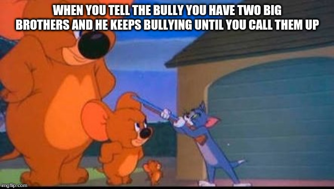 Tom and Jerry |  WHEN YOU TELL THE BULLY YOU HAVE TWO BIG BROTHERS AND HE KEEPS BULLYING UNTIL YOU CALL THEM UP | image tagged in tom and jerry | made w/ Imgflip meme maker