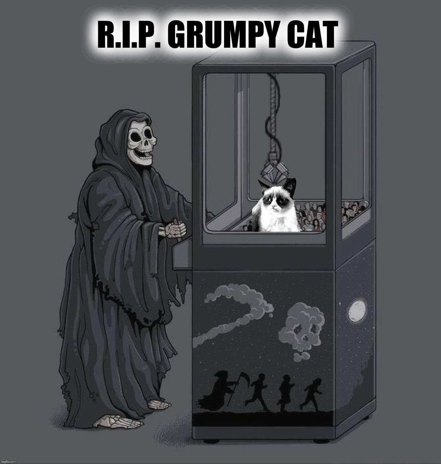 Grumpy Cat Grim Reaper Meme - Alison Handley